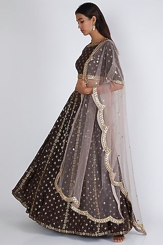 Brown Printed & Embroidered Lehenga Set by Salian By Anushree