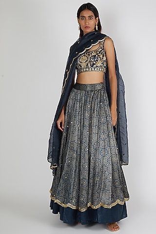 Navy Blue Two Layered & Embroidered Lehenga Set by Salian By Anushree