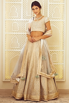 Ice Blue Thread Embroidered Lehenga Set by Shyam Narayan Prasad
