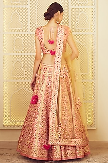 Pink Embroidered Lehenga Set by Shyam Narayan Prasad