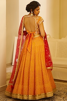 Multi Colored Printed & Embroidered Lehenga Set by Shyam Narayan Prasad