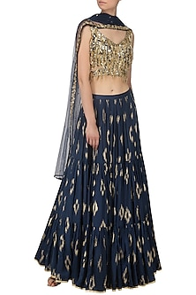 Navy Blue Embroidered Lehenga Set by Salian by Anushree