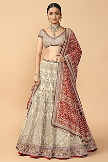 Grey Embroidered Kalidar Lehenga Set by Tarun Tahiliani