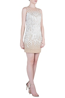 White Embroidered Net Dress by Trish by Trisha Datwani