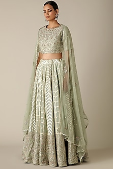Pale Green Floral Embroidered Lehenga Set by Varun Nidhika